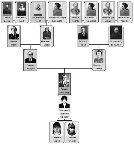 Родословное дерево (схема)