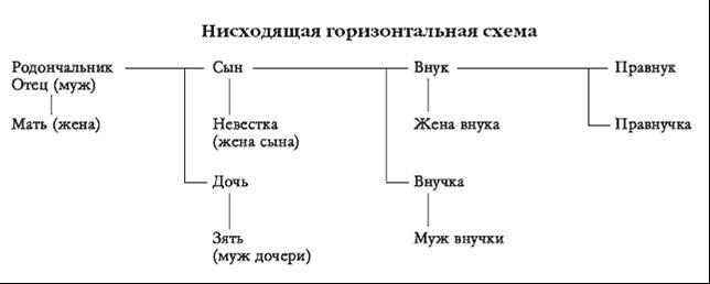 Примеры оформления родословного дерева.