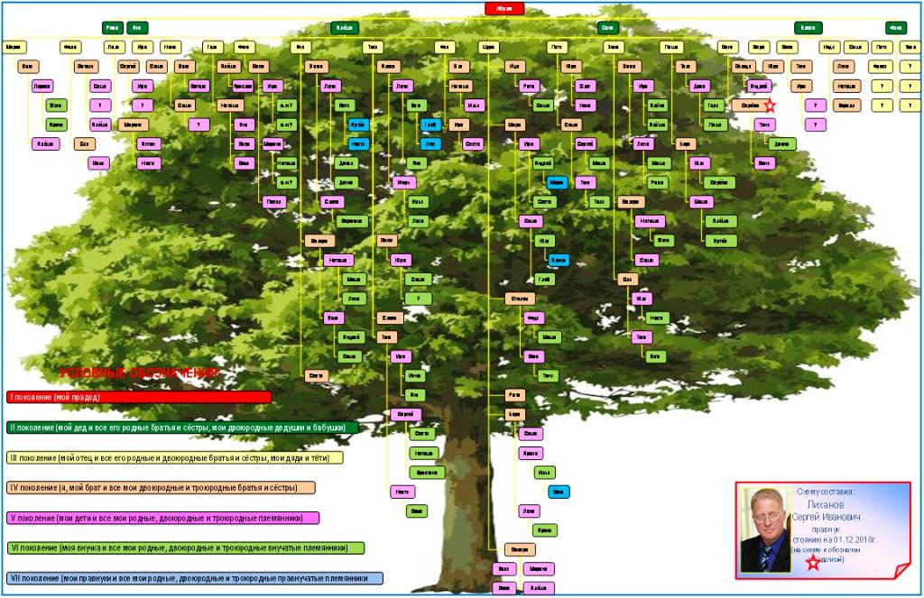 Родословное древо (часть 1)